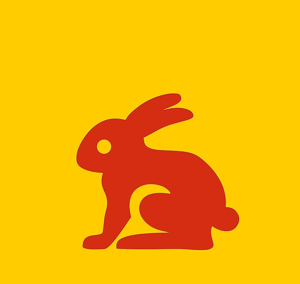 rabbit graphic